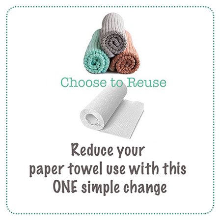 How to Reduce your Family's Paper Towel Usage – ONE Small Change