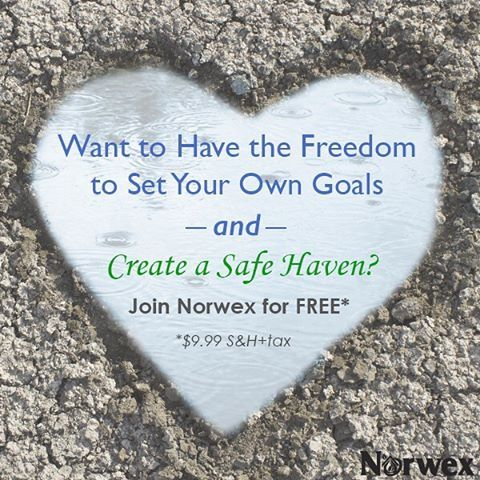 become norwex consultant